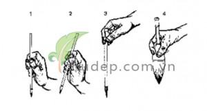 Cách cầm bút lông